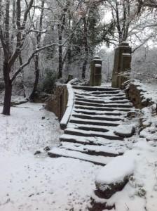 steps lower basin
